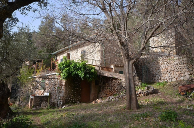 Olive grove with cottage up in the mountains of Fornalutx