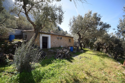 Olive grove with mountain cottage in Es Marroig, Fornalutx