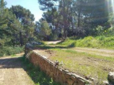 Two pieces of rustic land in the outskirts of Sóller