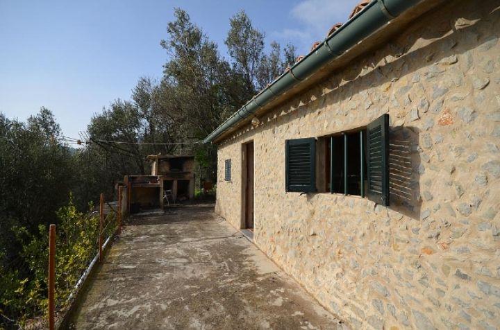 Olivenhain mit bergh tte in den bergen von fornalutx for Dreamhomes com
