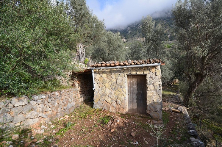 Olive grove with cottage up in the mountains of fornalutx for Dreamhomes com