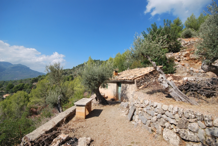 Olive groove with great views over fornalutx mallorca for Www dreamhomes com