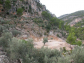 Olive grove with amazing views in Sóller