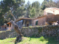 Nice and sunny mountain-cottage in Sóller, with great views to the valley and the sea